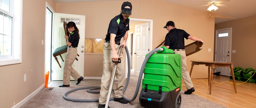 Greenville, MS cleaning services